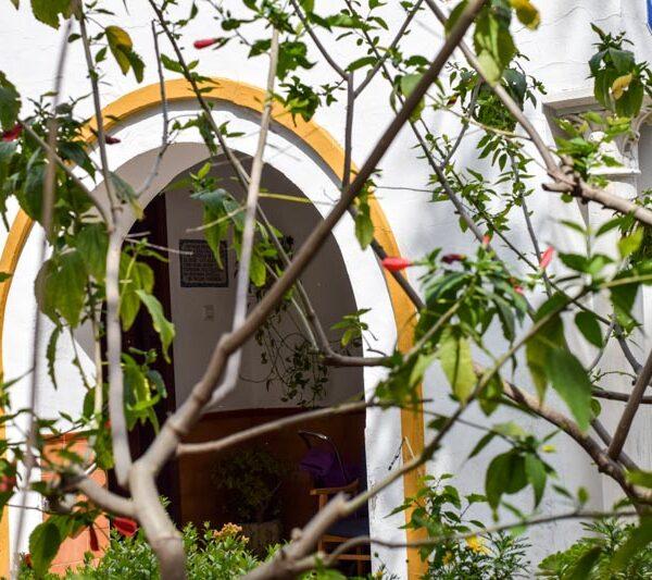 Imagenes jardín Residencia Aurora en Nervión, Sevilla