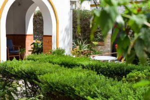 Zona verde. Exterior Residencia Aurora en Sevilla donde pasear