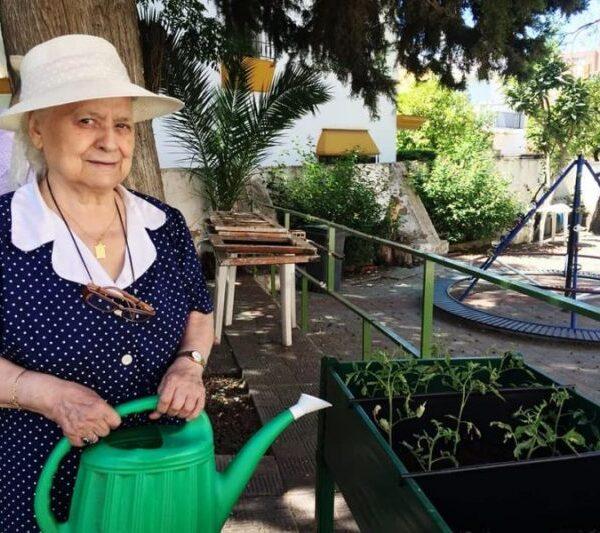 Actividades jardinería. Exterior Residencia Aurora en Nervión Sevilla