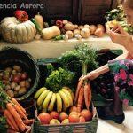 Frutas y verduras ecológicas Residencia Aurora Sevilla